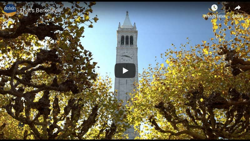 Video About Life At Berkeley